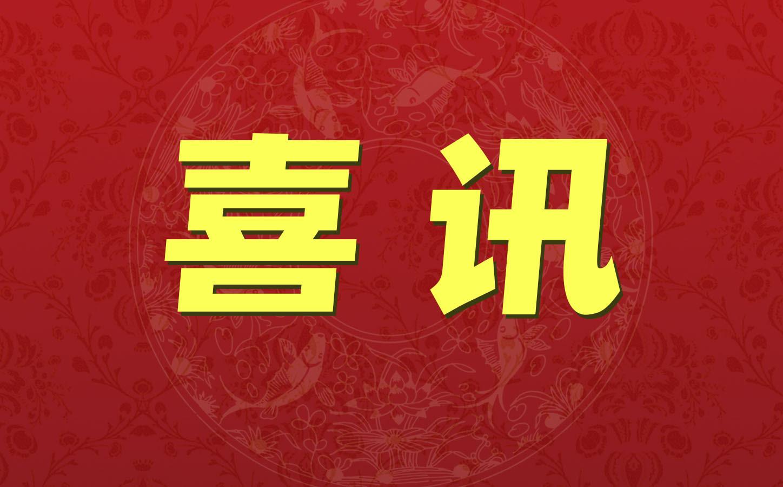 """喜讯:楚江新材并购天鸟高新项目荣获新财富""""最佳资本运作项目""""奖"""