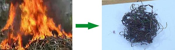 焚烧法.jpg